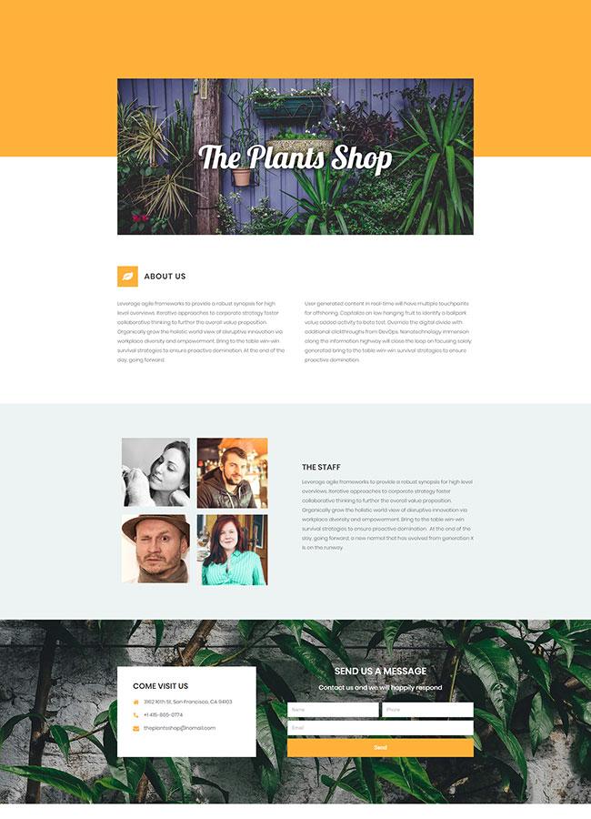 Templejt za veb stranica - Plants Shop About - Veb dizajn, Темплејт за веб страница- Plants Shop About - Веб дизајн